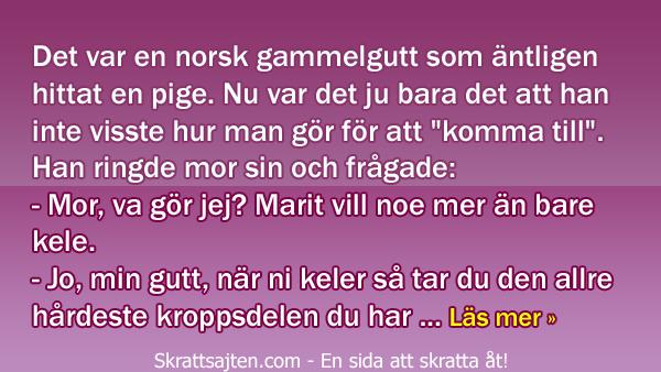 Norsk lektion i sexualkunskap - det som händer här är inte riktigt klokt