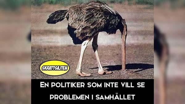 En politiker som inte vill se problemen i samhället