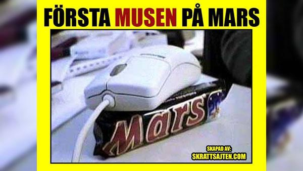 Första musen på mars