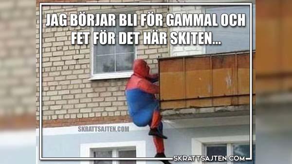 Feta spindelmannen