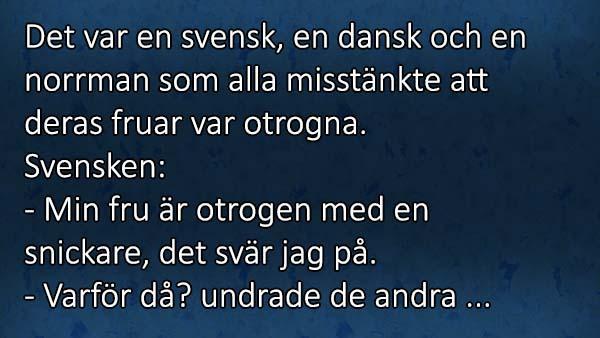 En svensk, en dansk och en norrman satt och diskuterade om sina fruar - norrmannen fick oss att skratta så vi gråter