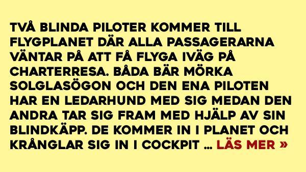 Blinda piloter har stor hjälp av passagerarna